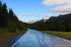 湿的路 免版税库存照片