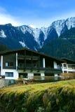 阿尔卑斯奥地利瑞士山中的牧人小屋 免版税库存照片