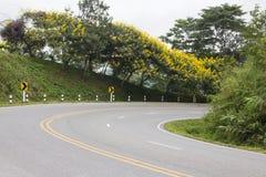 有树和花的弯曲的路 免版税库存照片