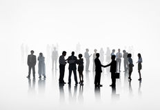 Большая группа в составе бизнесмены работая совместно Стоковые Изображения
