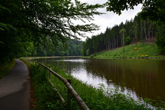 Δασική πορεία κατά μήκος του ποταμού Στοκ φωτογραφία με δικαίωμα ελεύθερης χρήσης