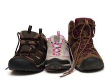 Οικογένεια παπουτσιών Στοκ Εικόνες