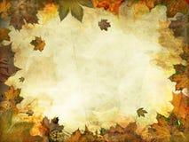 Предпосылка листьев осени меланхоличная винтажная Стоковое фото RF