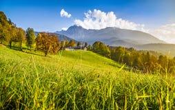 阿尔卑斯秋天美好的横向 免版税库存照片