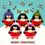 圣诞节唱诗班企鹅 免版税库存照片