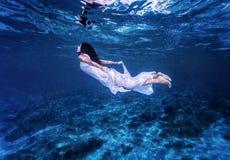 游泳在美丽的蓝色海 免版税库存图片