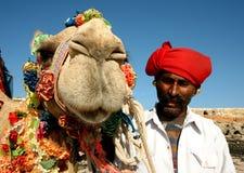 在徒步旅行队的骆驼 免版税库存照片