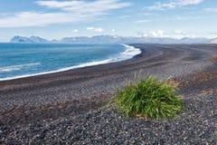 海滩黑色冰岛沙子 免版税库存图片