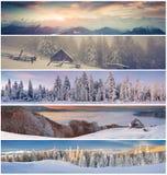 Χειμερινό κολάζ με το τοπίο Χριστουγέννων για τα εμβλήματα Στοκ εικόνα με δικαίωμα ελεύθερης χρήσης