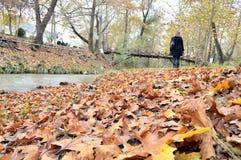 在河旁边的秋叶 图库摄影