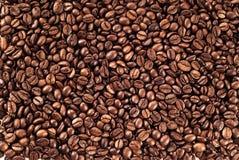 当背景是豆装使用的咖啡纹理于罐中 库存照片