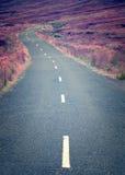 在茫茫荒野中一条卷曲长的离开的路 免版税图库摄影