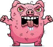 恼怒的丑恶的猪 库存照片