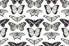 蝴蝶无缝的葡萄酒背景 免版税图库摄影