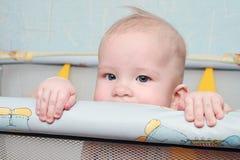 визирование младенца Стоковое Изображение