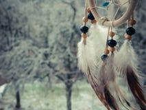 在冬天森林的梦想俘获器 图库摄影