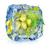 在冰块的绿色葡萄 免版税库存图片