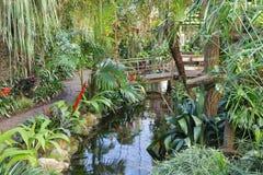 有供徒步旅行的小道和脚桥梁的植物园 免版税库存图片
