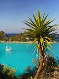 棕榈树,天蓝色的热带盐水湖 免版税库存照片