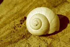 房子蜗牛 库存图片