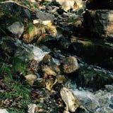 河 免版税库存图片
