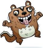 动画片疯狂的丑恶的花栗鼠 免版税库存照片