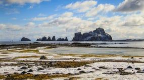 南设得兰群岛,南极洲 库存图片