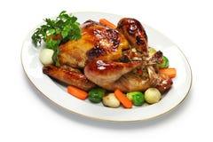 自创烘烤火鸡,感恩圣诞晚餐 免版税库存照片