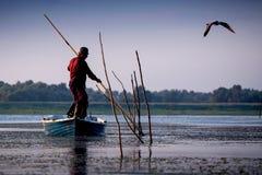 从多瑙河三角洲的渔夫 免版税图库摄影
