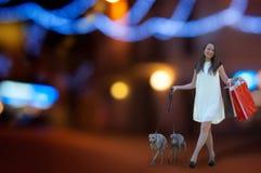 有两灵狮的女孩在有购物袋的夜镇 免版税图库摄影
