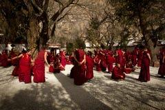 Группа в составе монастыря сывороток дебатируя монахи Лхаса Тибет Стоковые Изображения RF