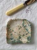 发霉的面包 免版税图库摄影