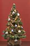 微型圣诞树 库存照片