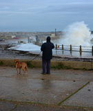 一个冬天的妇女和狗观看的碰撞的波浪猛冲 库存照片