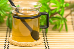 茶 免版税库存照片