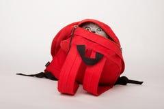 在一个红色袋子的米黄猫,在白色背景 免版税库存照片