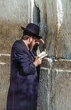 Правоверный еврейский человек молит на западной стене Стоковые Изображения RF