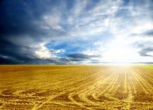 农业 免版税库存图片