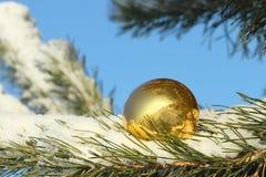 在雪的球形 免版税图库摄影