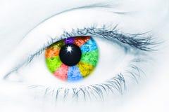 颜色视觉 免版税库存照片