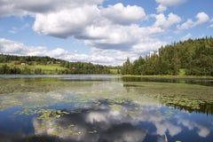 Шведское озеро Стоковая Фотография