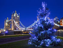 塔桥梁和圣诞树在伦敦 库存图片