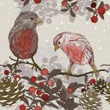 与冬天鸟的无缝的样式 库存图片