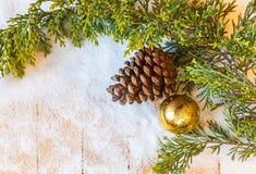 圣诞树分支、杉木锥体和冷杉木在雪戏弄 免版税库存图片