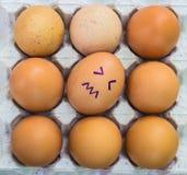 与表面的鸡蛋 免版税库存图片