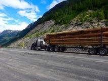 交换的木材在不列颠哥伦比亚省 库存照片