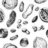 与坚果的传染媒介无缝的样式咖啡 免版税库存照片