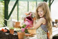 女孩浇灌年轻人的温室植物 库存图片