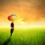 Ευτυχής γυναίκα ομπρελών που πηδά στον πράσινους τομέα και το ηλιοβασίλεμα ρυζιού Στοκ φωτογραφίες με δικαίωμα ελεύθερης χρήσης