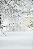 зима дня совершенная Стоковая Фотография RF